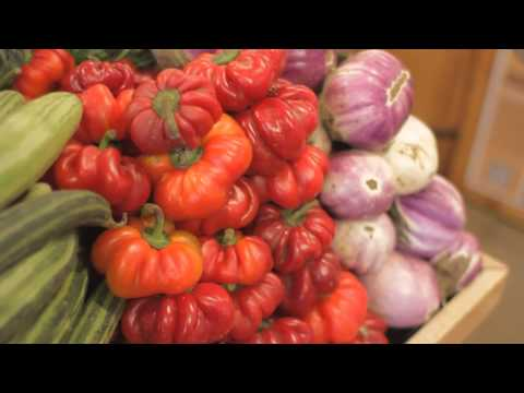 The Disadvantages of Genetic Vegetables