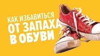 Как избавиться от запаха в обуви | Лайфхакер(Почему возникает неприятный запах? Во всём виноваты бактерии, которые хорошо размножаются во влажной и..., 2015-08-25T13:54:58.000Z)