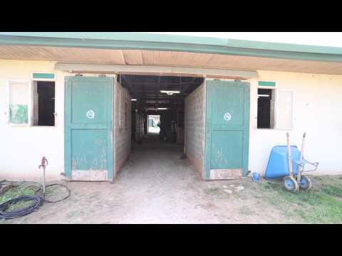 Remington Park thoroughbred season is right around the corner