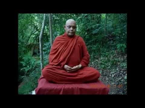 Nivanata Maga - Na Uyane Ariyadhamma Maha Thero