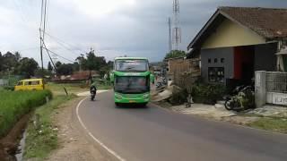 Telolet SHD BUS GNF TRANS 57