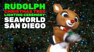 Rudolph the Red-Nosed Reindeer Christmas tree lighting ceremony at SeaWorld San Diego 2016