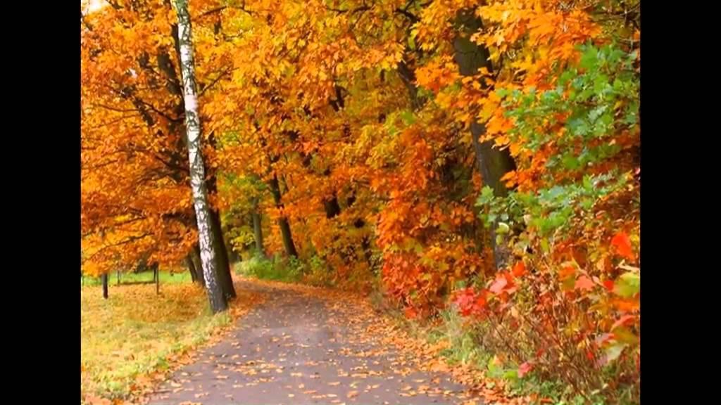 automne en Moldavie