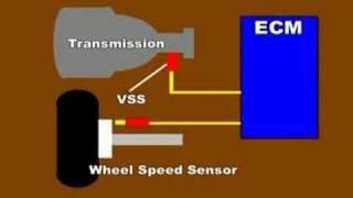 VSS or Vehicle Speed sensor