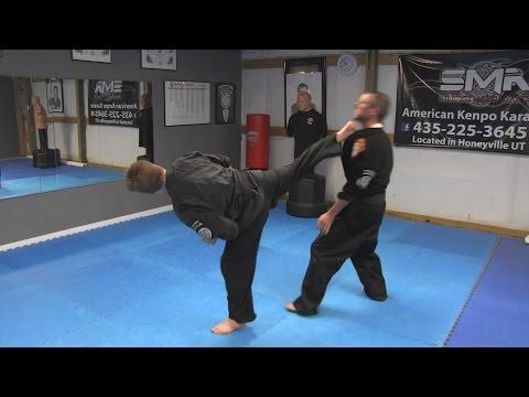 Kenpo Karate Techniques AKKI