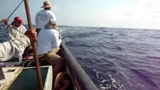 Pesca en Coatzacoalcos de Peto