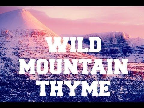 ♫ Scottish Music - Wild Mountain Thyme ♫