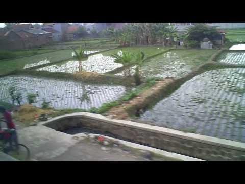 Treinreis van Yogyakarta naar Jakarta (Java - Indonesie)