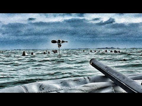 Deep Water Duck Promo