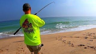 Fish, Fish, and more Fish Surf Fishing Florida East Coast