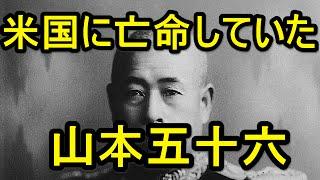 海軍が日本を敗北させた! 新たに分かって来た真実!