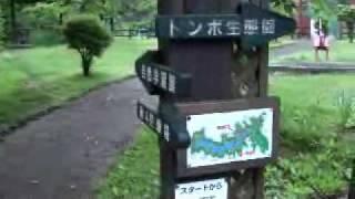 秋田犬のヨン君と下条川ダムに行きました.