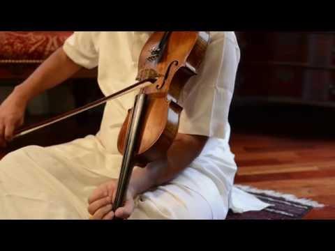 Princeton Violins, Kingston NJ
