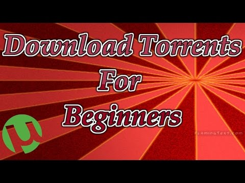 How to Download Torrents from YIFY (YTS) and Kickass Torrents for Beginners streaming vf