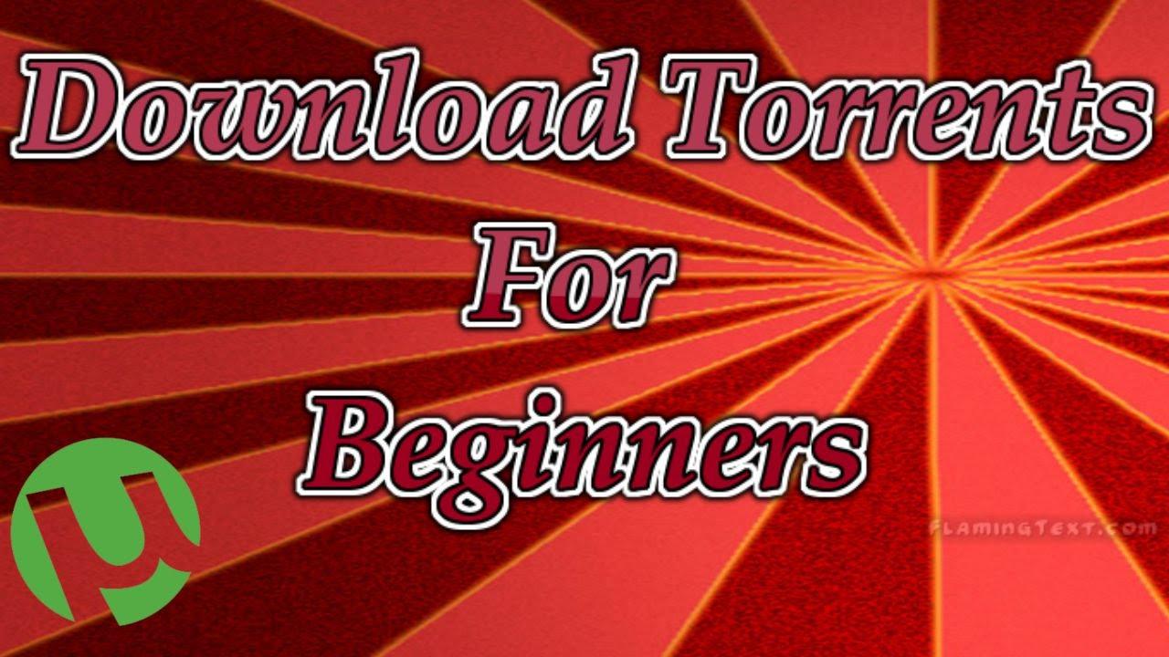 spotlight torrent download yify
