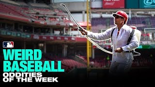 Dietrich handles bees in this week's Weird Baseball! (5/1 to 5/8) thumbnail