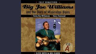 Blues Trip Me This Morning - Tommy McClennan