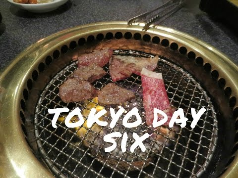 Tokyo Day 6: Andaz Tokyo hotel room tour, Japanese BBQ, and more!