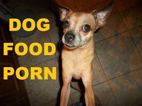 Dog Food Porn (oh, the teasin')
