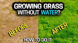 Grow grass without sprinklers or a hose? See for yourself.