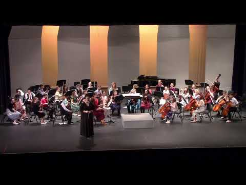 Neely Traditional Academy, 2018 Winter Concert, Beginning Orchestra