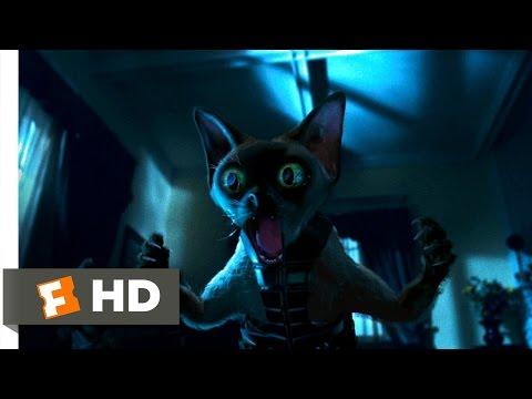 Cats & Dogs (3/10) Movie CLIP - Ninja Cats (2001) HD