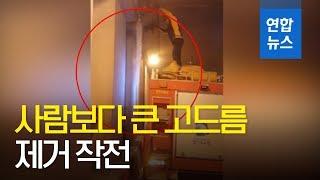 지하차도에 사람보다 큰 고드름이?! / 연합뉴스 (Yonhapnews)