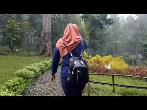Travel Vlog Kebun Raya Baturaden Purwokerto