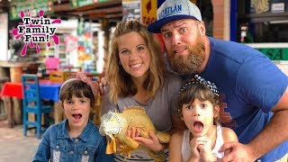We Found a Tiny Dragon in Mexico!! Tropical Family Vacation | Twin Family Fun!