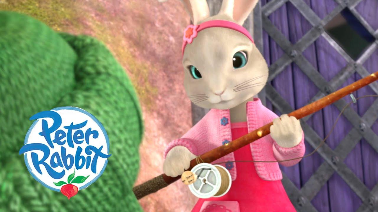 Peter Rabbit - Peter Needs Our Help! | Cartoons for Kids
