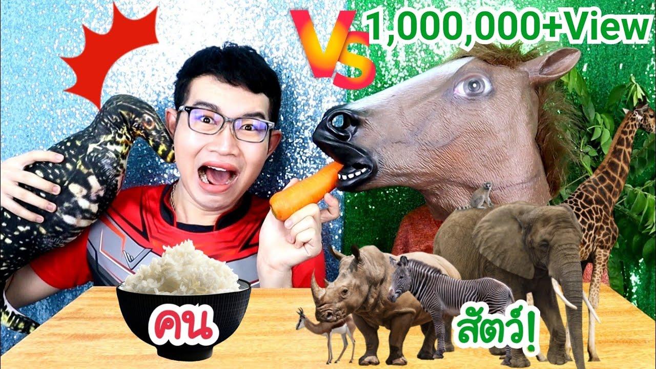 ชาเลนจ์คน VS สัตว์ อาหาร มนุษย์กับสัตว์ #Mukbang People vs Animals FOOD 사람 대 동물 음식:ขันติ
