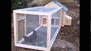 видео Как построить летний курятник на даче своими руками