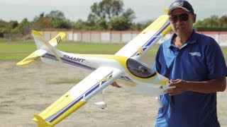 Dynam Smart 1500MM Trainer RC Airplane Review