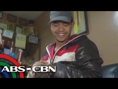 TV Patrol North Luzon: Mga alagang aso na rumarampa sa fashion shows, petmalu!