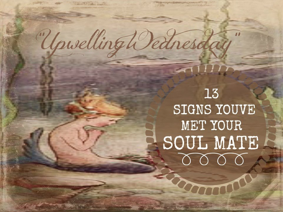 13 SIGNS YOUVE MET YOUR SOULMATE/TWIN FLAME