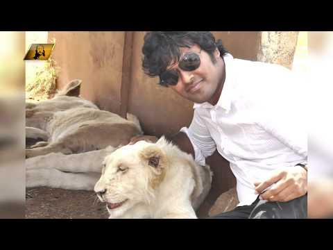 యూదా  గోత్రపు  సింహము ?|| సంచలనాత్మక  సందేశం  || Lion of Judah ||  powerful Message || Paul Emmanuel