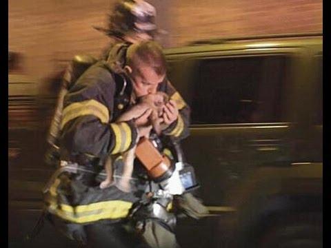Rosharon vfd links and events, rosharon volunteer fire department, rosharon fire