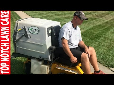 Best Lawn Mower, New or Used Equipment, Lawn Care Vlog #119