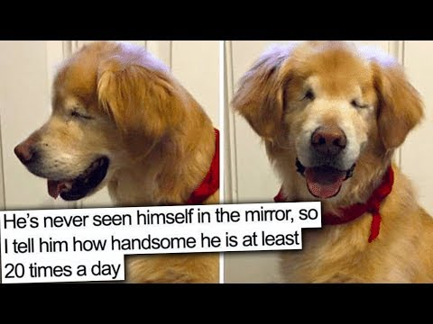 this video will make you smile :)