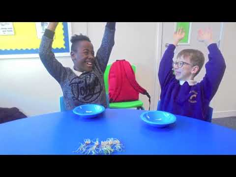 Grow on, Film It   St Giles School   From seed to plate