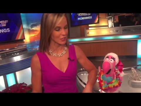 SFL Flamingo Croons Christmas Forecast