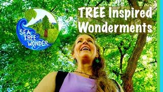 Appreciating TREE Wonders & Summer Leaves - NATURE Inspires Awe