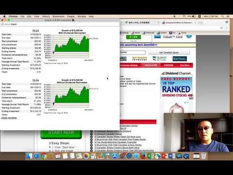 Canadian Stock Market TSX 60