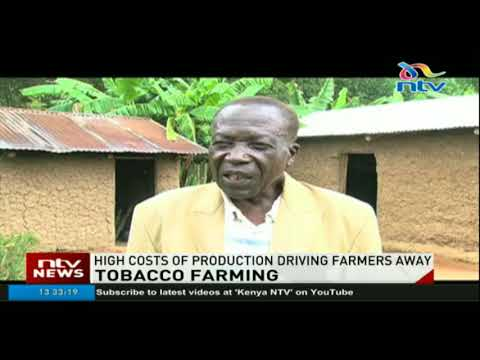 High costs of production driving tobacco farmers away