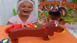 Download Video Afacan dogi , slime yiyor sonra kakasını yapıyor .. senin görevin kakaları toplamak ,Eğlenceli çocuk MP3 3GP MP4