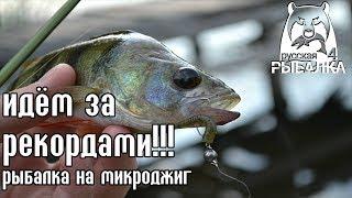 Рыбалка на микроджиг - идём на РЕКОРД! - Русская Рыбалка 4/Russian Fishing 4