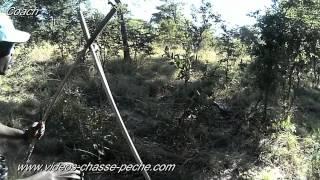 Chasse buffle en Afrique - Caméras Coach et Evo HD Camsports - Hunting buffalo