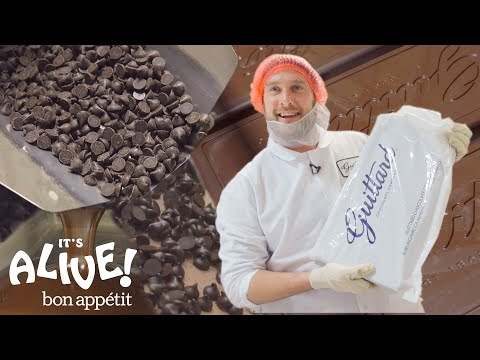 Brad Makes Chocolate: Part 2 | Its Alive | Bon Appétit