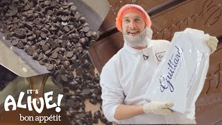 Brad Makes Chocolate: Part 2 | It's Alive | Bon Appétit
