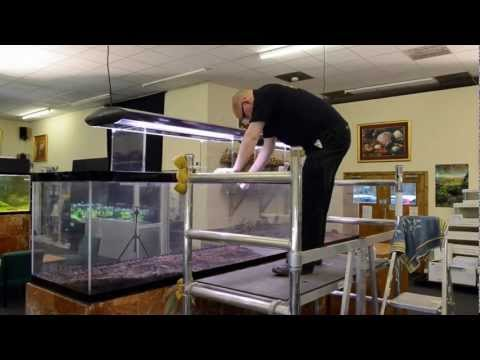 Aquascaping Tutorial Guide  The Making Of U0027Reciprocityu0027 By James Findley